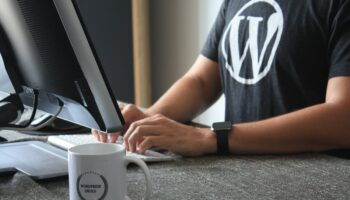 Почему WordPress так «сексуален»?